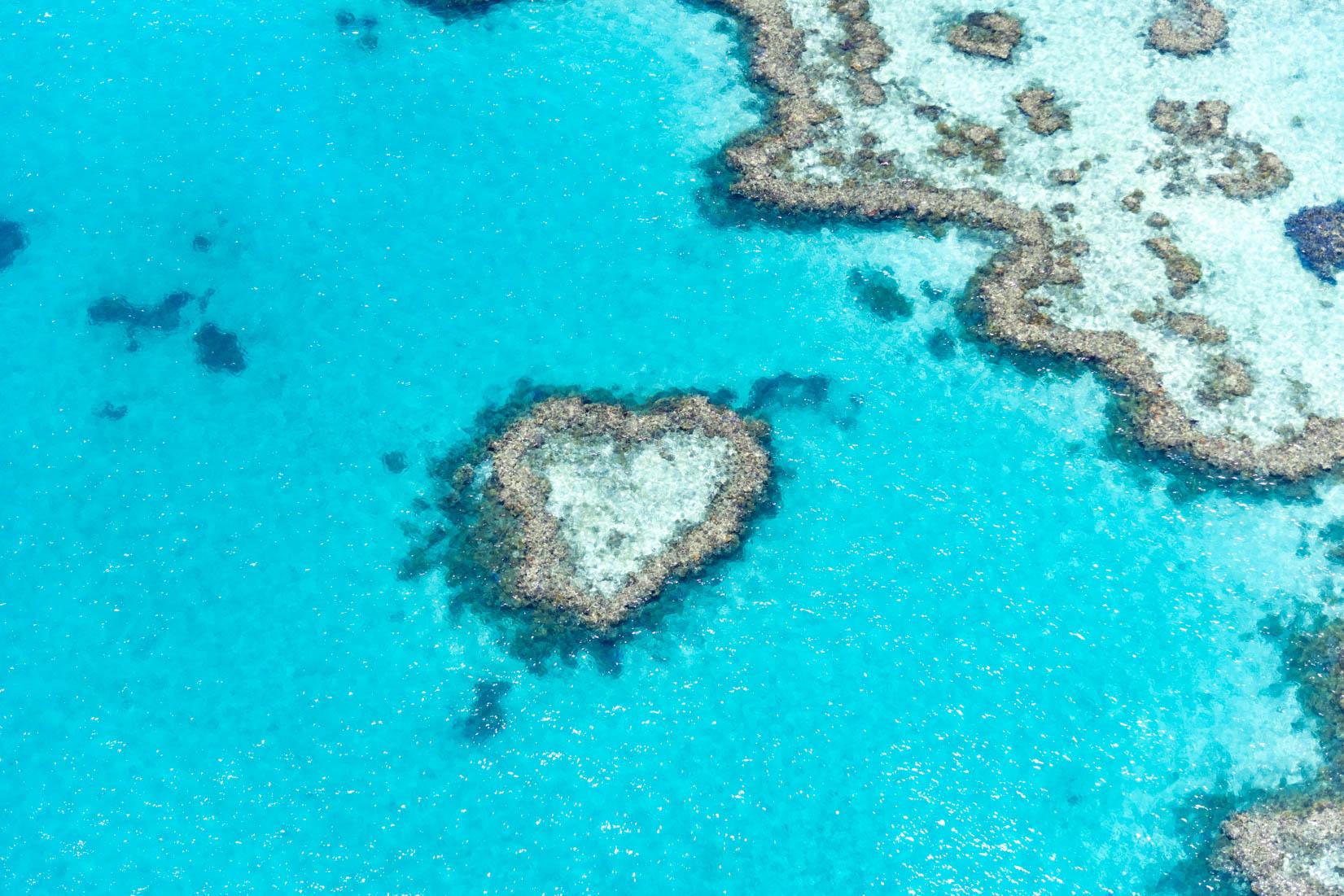 Heart Reef im Great Barrier Reef, Australien